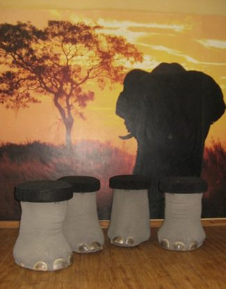 Elephant Feet Footstools