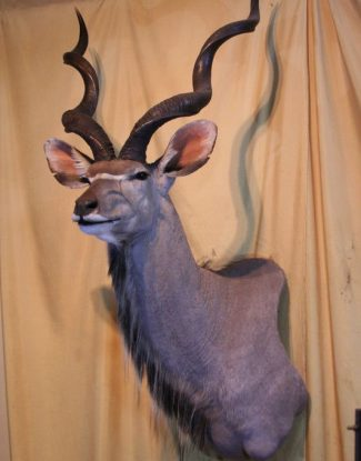 Kudu Off Set Shoulder Mount