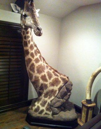 Giraffe Pedestal