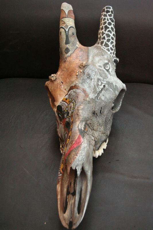 Wild and Native Africa on Giraffe Skull