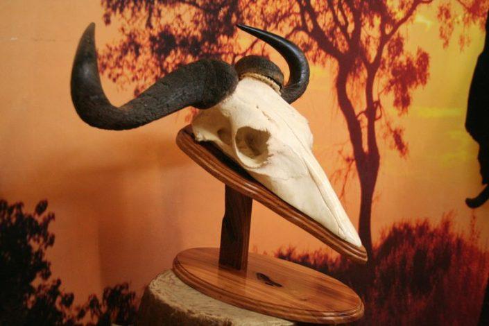 Wildebeest Natural Desk Pedestal