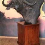 Buffalo Pedestal Mount